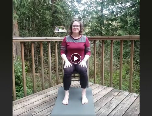 Foot and Ankle Strengtheners